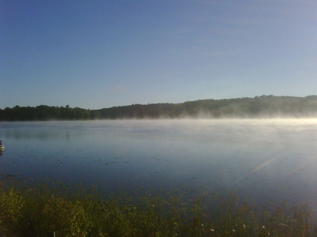 steamy morning, submitted by Jean Maess