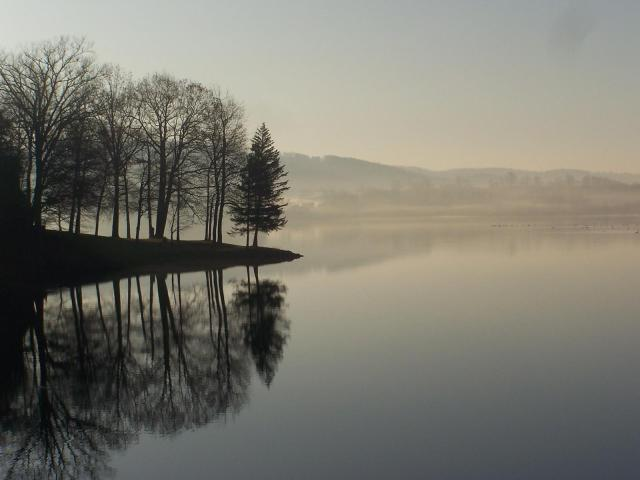 Misty Morning, submitted by Darryl Miller