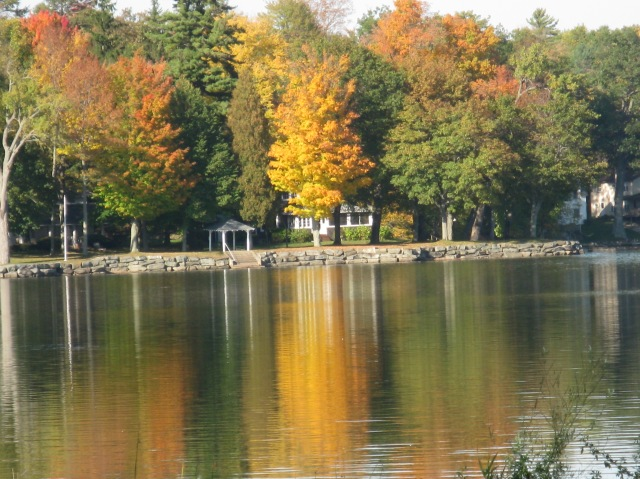 The north end at fall, submitted by Jean Maess